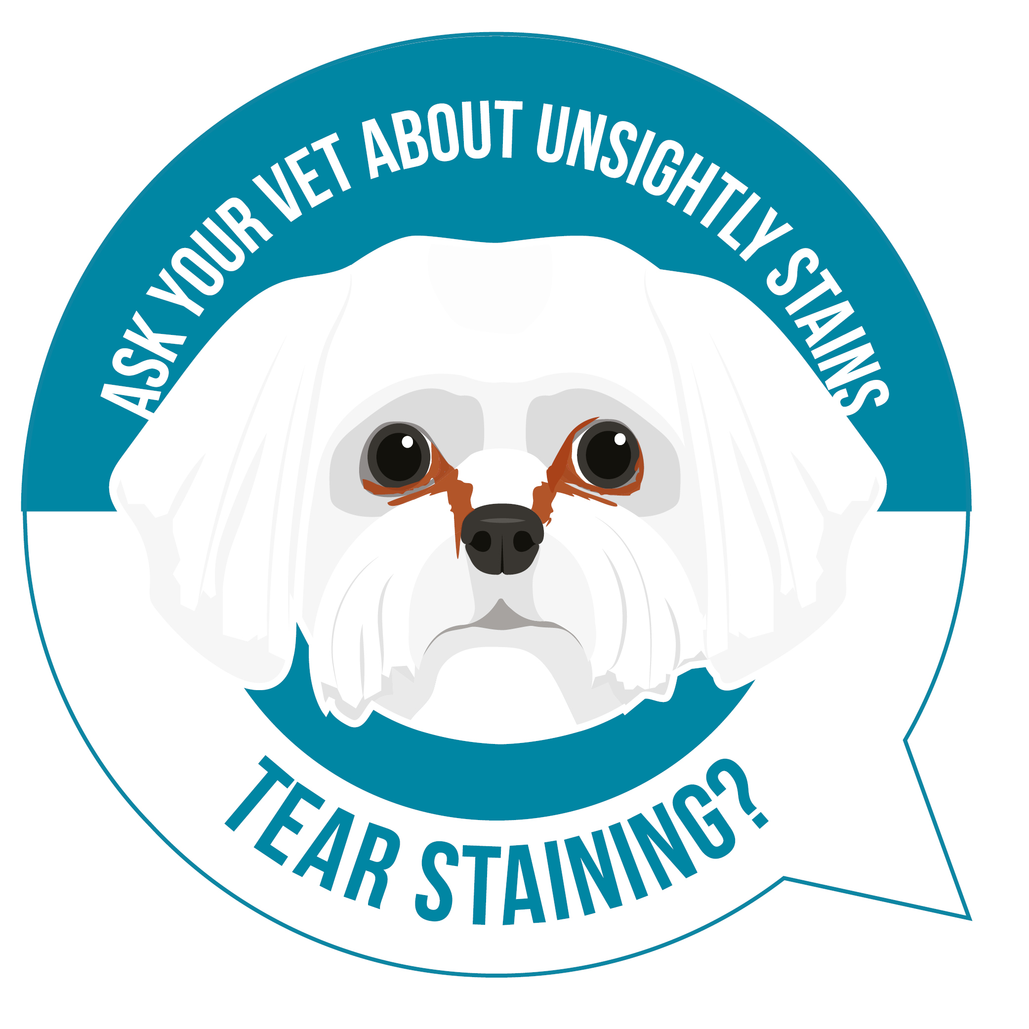 Dog with tear stains